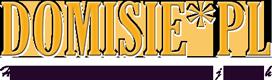 domisie_logo_s