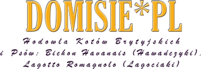 logo-start2017-288